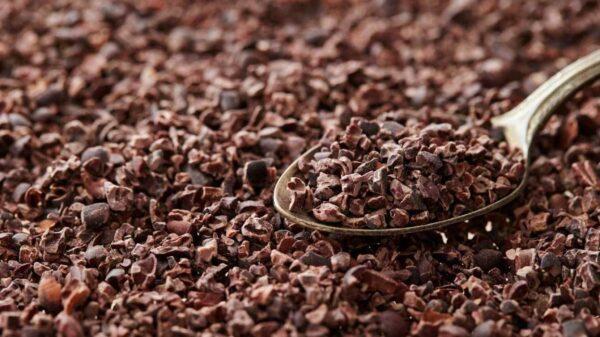 Cacao Nibs Costa Rica