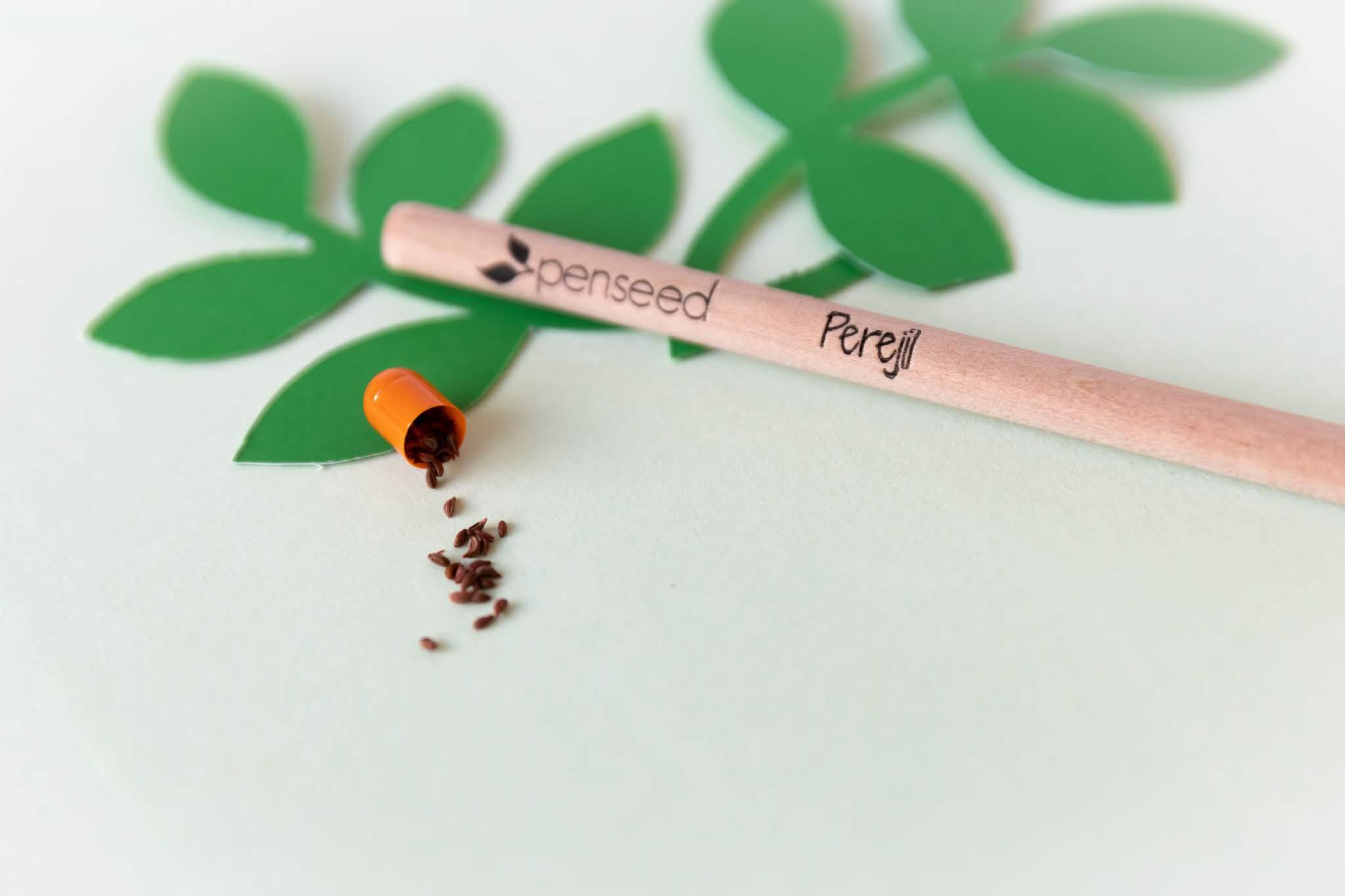 Lápiz Lapices Ecológicos y Sostenibles