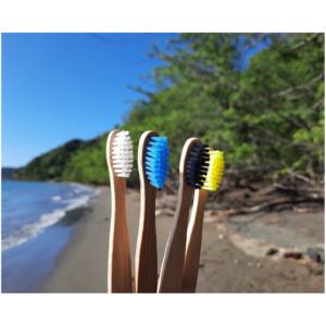 cepillo basico de bambu