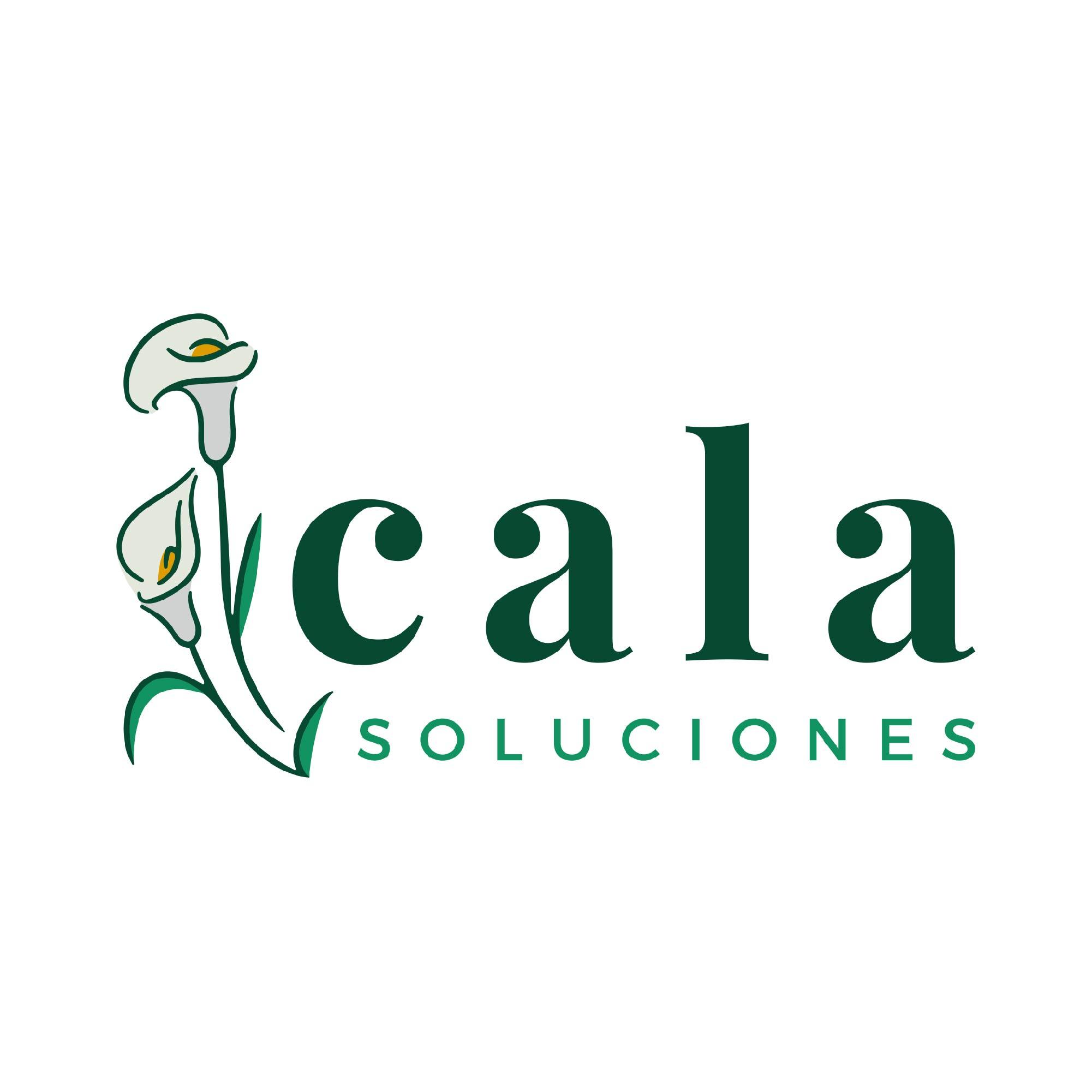 Cala Soluciones Costa Rica Shampoo y acondicionadores en barra ecológicos